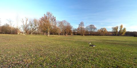 Parkanlage Max Eyth See