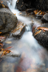 fall scenery in forest with flowing river waterfall in long exposure in selective colors
