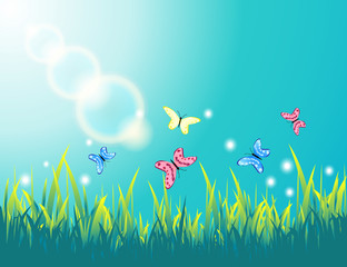 Summer sunny day landscape with butterflies in the grass. Life of insects in the meadow.