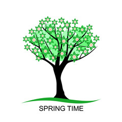 Flowering spring tree with leaves