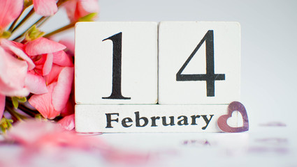 Valentine's Day theme with confetti heart signs and wooden block calendar, February 14th and a branch of pink geranium