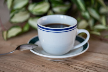 A cup of coffee with a coffee spoon and a pot of green plant on the background