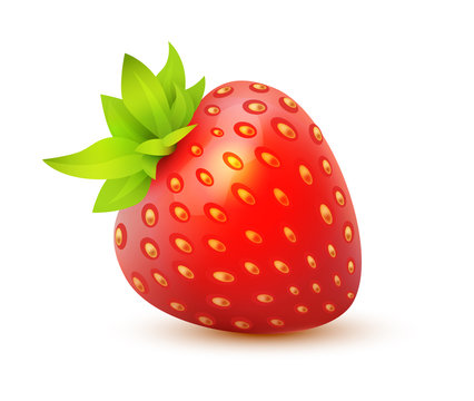 Vector icon of Strawberry - juicy realistic illustration of single isolated berry.