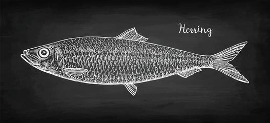 Chalk sketch of herring.