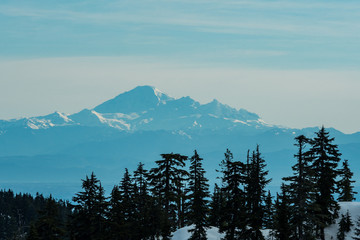 Aluminium Prints Blue sky snow covered mountain under blue haze behind pine tree covered hill top on an over cast day