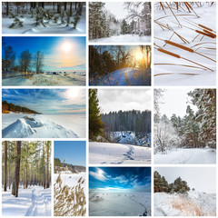Collage seasons-winter. The Nature Of Western Siberia