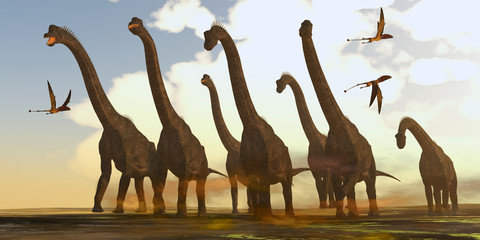 Brachiosaurus Dinosaurs on Trek -Dimorphodon reptiles fly past a herd of Brachiosaurus dinosaurs during the Jurassic Period.