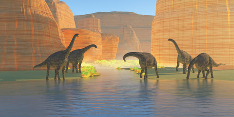Cetiosaurus Canyon River -A herd of Cetiosaurus dinosaurs drink from a canyon river during the Jurassic Period of Morocco, Africa.