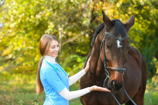 Veterinarian in uniform with beautiful brown horse outdoors