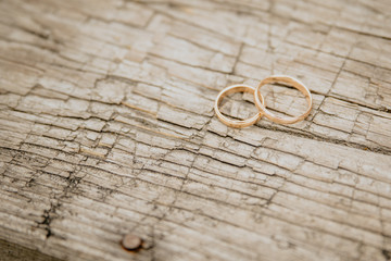 Obrączki Ślubne leżące na drewnie