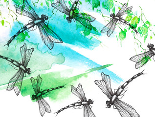Watercolor illustration. Dragonfly flies against the sky, birch branches, linden, tree. Abstract paint splash. Stylish drawing. Dragonfly Graphic Realistic Line Ink Drawing. Hand-drawn illustration.