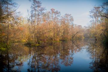 Beautiful lake hidden in the swamps of Laplace, Louisiana.