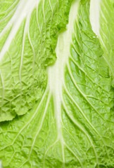 Chinese cabbage leaf all over the field frame. Background.