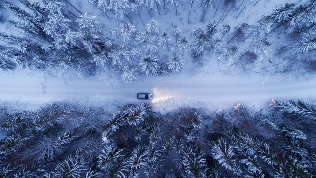 Car driving on snowy country road through fir forest at night.