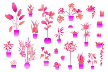 Neon flowers and plants in pots isolated on white