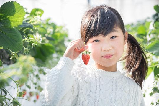 笑顔でいちごを持つ女の子