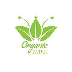 Healthy Organic Food Logo with leaf. Vector illustration.