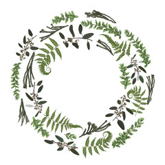 Green vector wreath frame made from twigs and leaves. Forest fern, herbs, eucalyptus, branches boxwood, buxus, brunia, botanical green isolated on white background. For wedding
