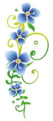 Florale filigrane Ranke mit Ehrenpreis. Sommerranke mit blauen Blüten. Wiesenblume.