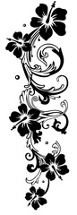 Florale, sehr filigrane Ranke mit Hibiskusblüten. Hibiskus, schwarz.