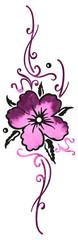 Filigranes Ornament mit Hibiskusblüte. Buntes Design für den Sommer. Aloha.