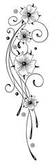 Florale filigrane Ranke mit Kapuzinerkresse. Sommerranke mit schwarzen Blüten. Filigranes Ornament.
