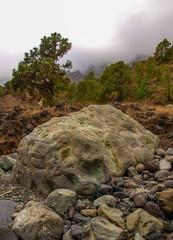 Trockenes Flussbett im Caldera de Taburiente Nationalpark auf La Palma