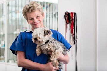 Smiling mature veterinarian carrying sick puppy in hospital