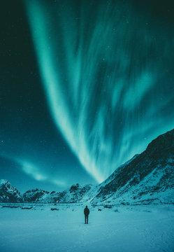 Young man watching Aurora Borealis in winter, Lofoten, Norway