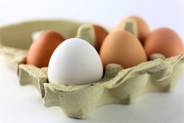 An Image of a eggs, food