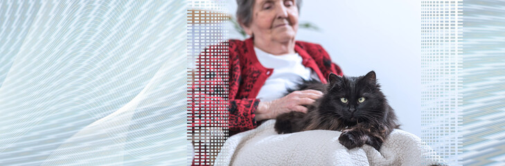 Old woman with her cat. panoramic banner