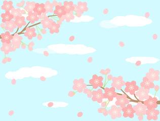 さくら22 桜