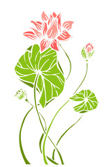 Composition of lotus flower with leaves in hand drawn style. Water lily vector illustration isolated on background.