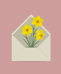 Yellow daffodils in the postal envelope. Spring flowers. Flower delivery concept. Floral composition. Vector illustration on a pink background