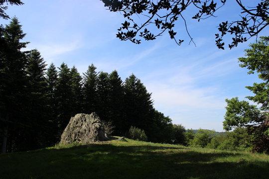 Pierre ou rocher de la Wivre dans une clairière du Mont Beuvray : antre de la dragonne