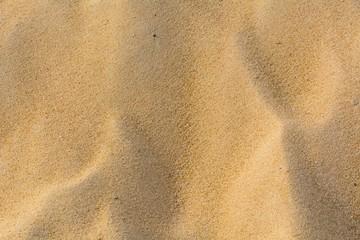The beach sand texture full frame background