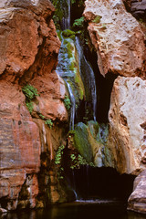 Elves Chasm, Grand Canyon National Park - This is in a very remote part of the Grand Canyon and can be seen either  by raft on the Colorado River or by backpacking over 100 miles.
