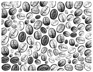 Coffee Time, Illustration Wallpaper of Hand Drawn Sketch of Roasted Coffee Beans Background.