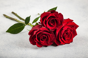Fresh red roses on stone background