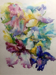 Abstract bright colored decorative background . Floral pattern handmade . Beautiful tender romantic spring bouquet of iris flowers , made in the technique of watercolors from nature.