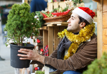 Young man choosing small Christmas tree at Christmas market