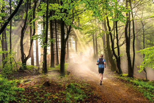 Man running through a forest at beautiful sunny weather