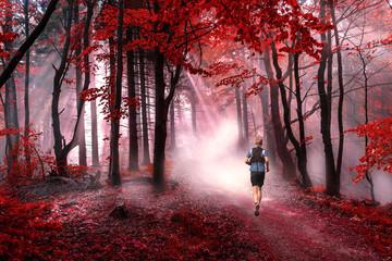 Foto op Aluminium Bossen Man running through a magical red forest in beautiful foggy sunshine