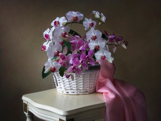 Still life with orchid basket