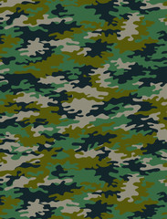 Camouflage pattern, seamless in vector. Any kind of use.