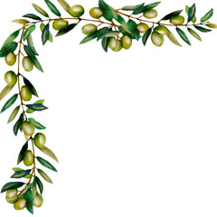Beautiful lush watercolor banner with olive tree branches with ripe olive berries and green leaves.