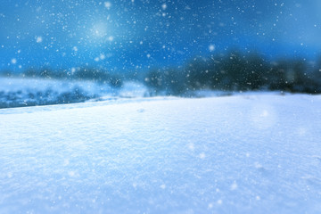 background image winter snow / photo with a close view of the background out of focus