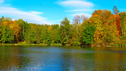 beautiful lake in forest and tree with yellow leaves in autumn