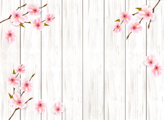 Wall Mural - Sakura japan cherry branch on wooden background. Vector