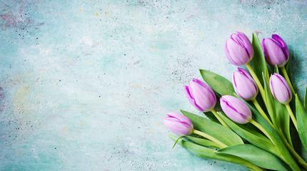 Frische Tulpen auf blauem Hintergrund - hübsche Osterdekoration im Banner Format mit Textfreiraum